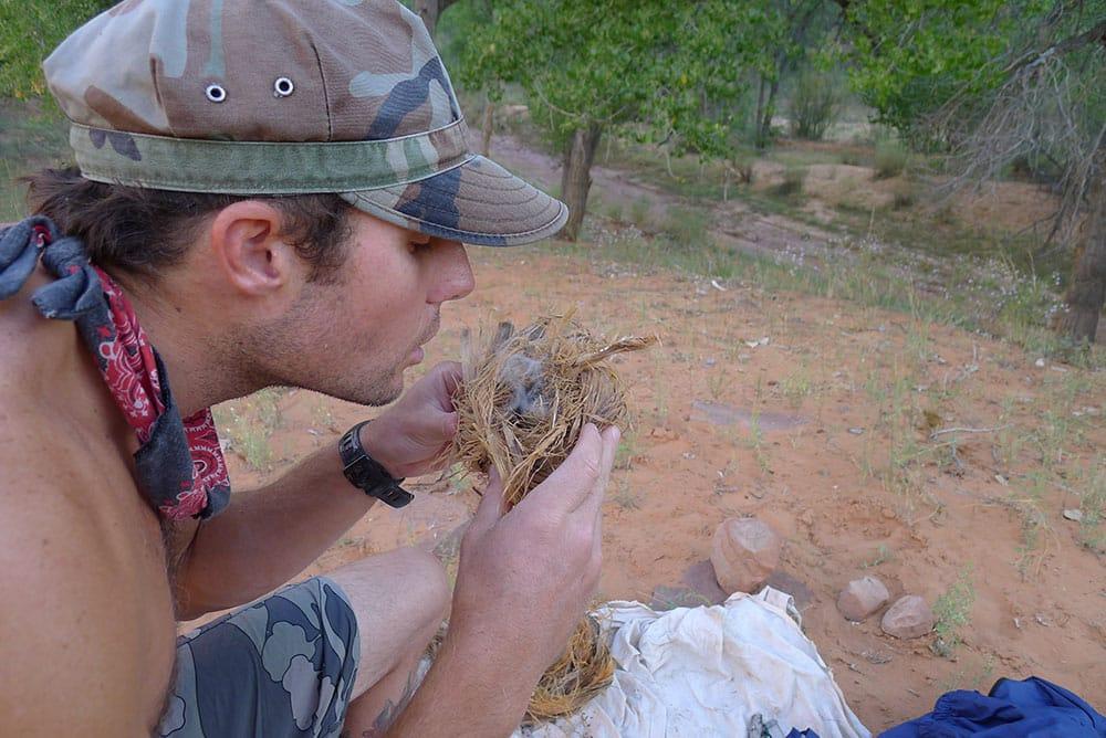bush survival skills