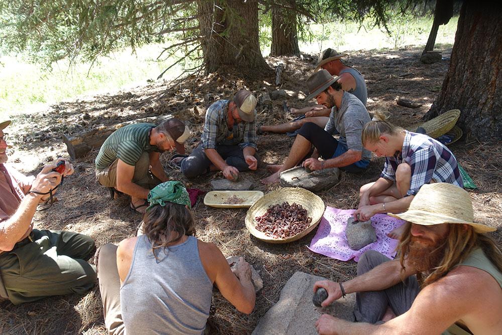 survival food gathering