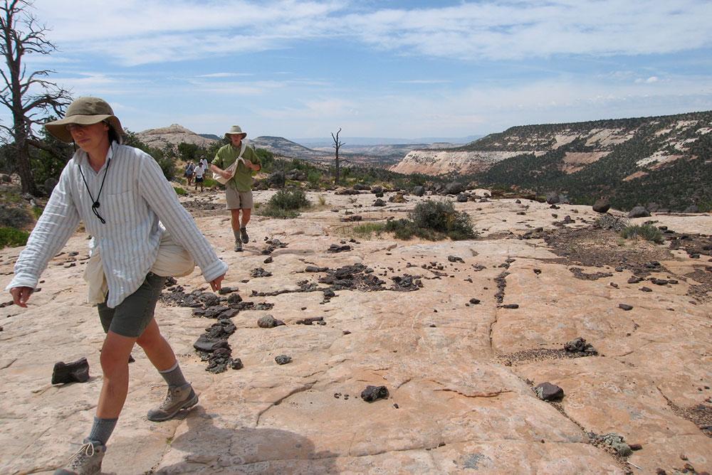 wilderness first responder recertification solo