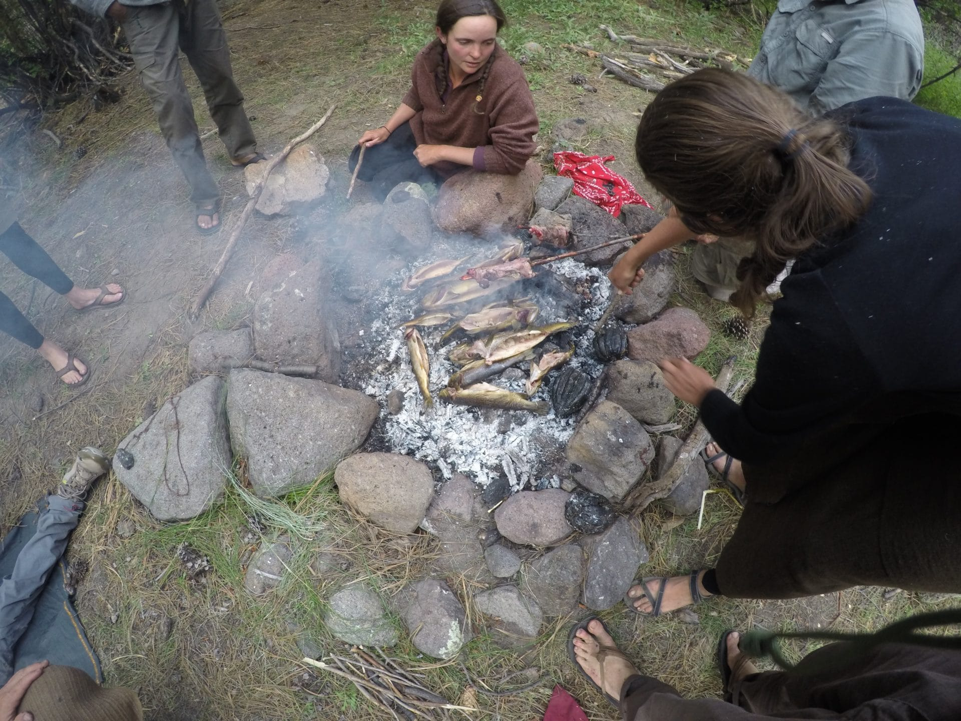 primitive skills survival